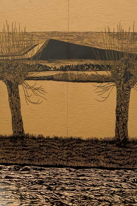 Interior landscape, 3d lino-cut, 6x4x3 m., 2009, photo by Quinten Smith