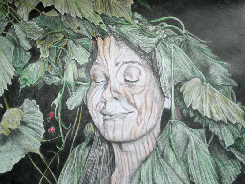 Tree woman, Party people, Midsummer's night fairytale, 2009, 56x78 cm.,  pencil + soft pastel drawing