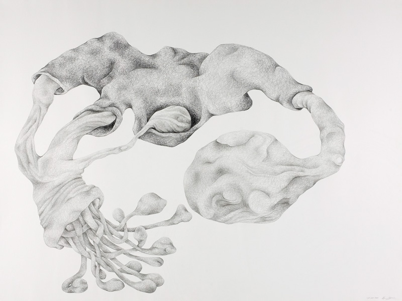soft-hard form, 2001, pencil drawing, 75x100 cm.