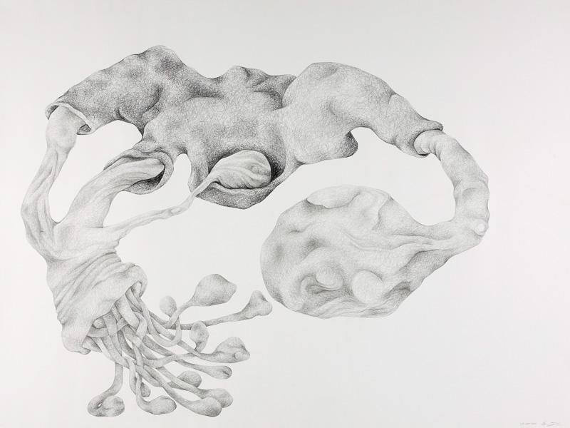soft-hard form, 2001, pencil drawing, 75x100 cm.