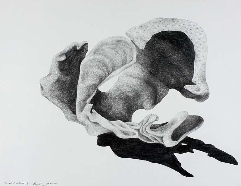 tongue form 2, 2000, pencil drawing, 75x100 cm.